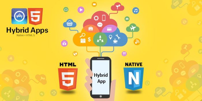 HYBRID MOBILE APPLICATION